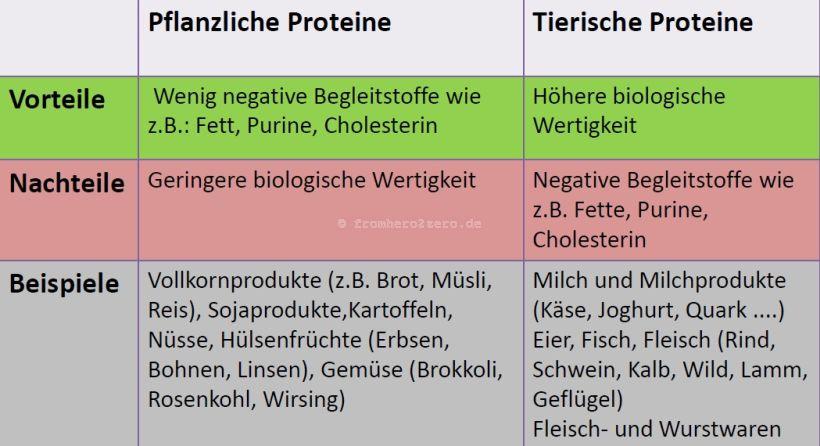 Vergleich pflanzliches und tierisches Eiweiß (Quelle Optifast©52)